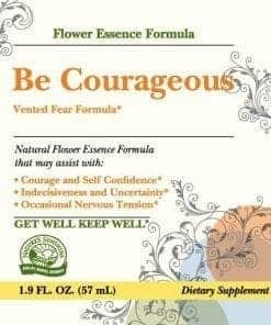 Be Courageous (Vented Fear Formula) (2 fl. oz.)